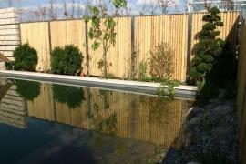 horstmann-bambus-9