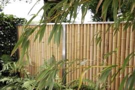 zaun-bambus-800